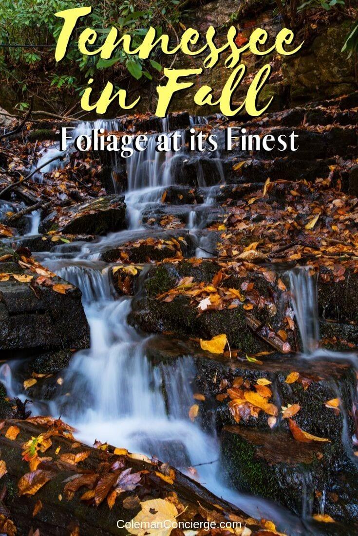 waterfall in fall in Tenness