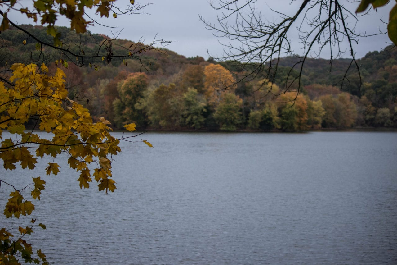 Fall foliage at Radnor Lake via Ashley Hubbard