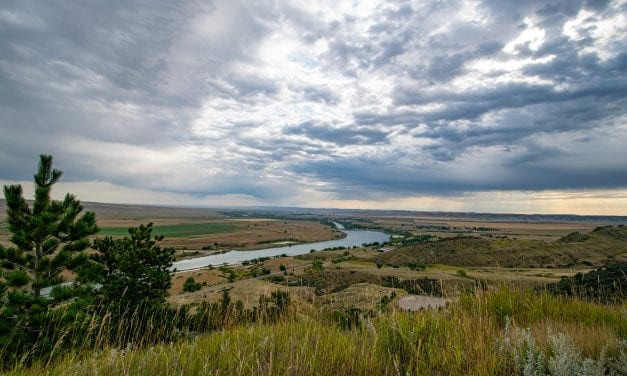 Fly Fishing Montana's Bighorn River: Fishy Dreams and Stranger Things