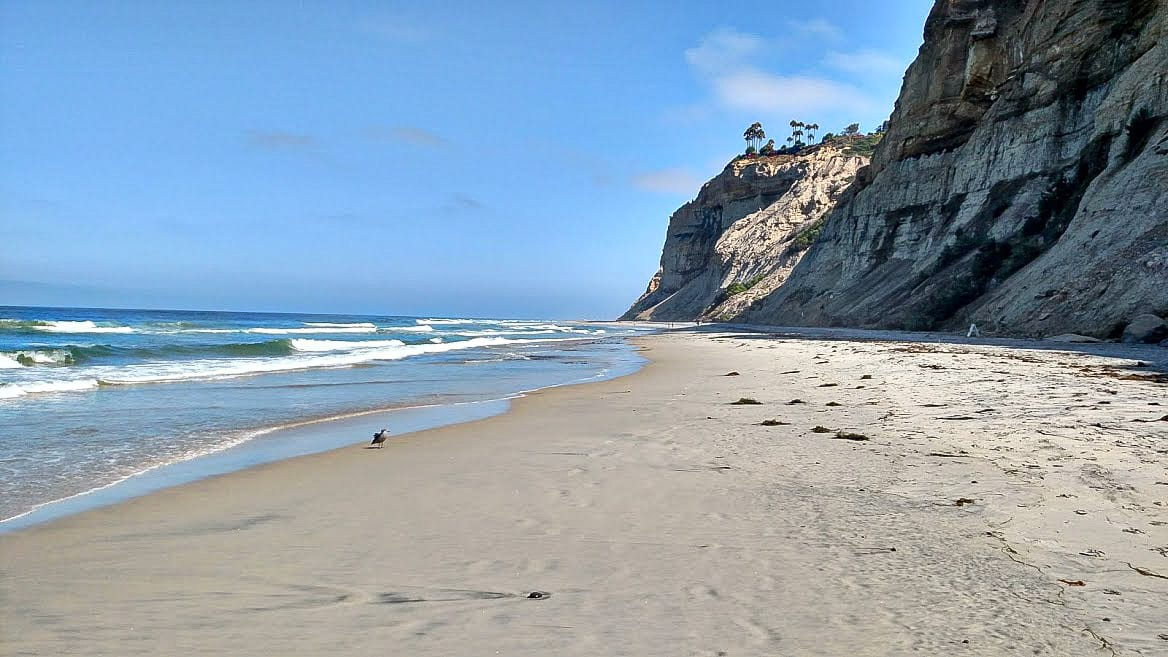 Blacks Beach-
