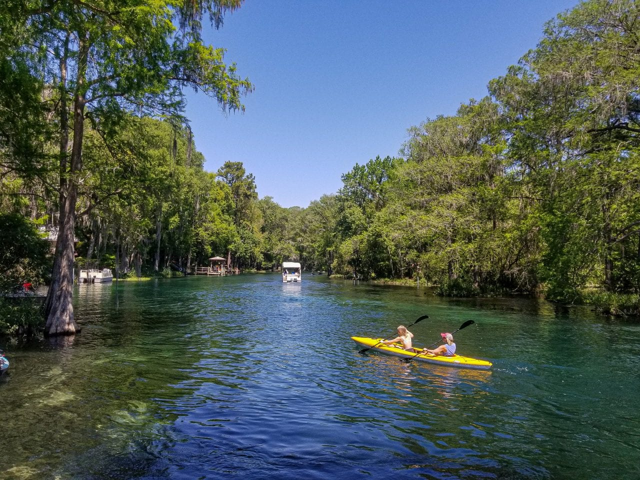 Views of kayaking from Swampy's on the Rainbow River