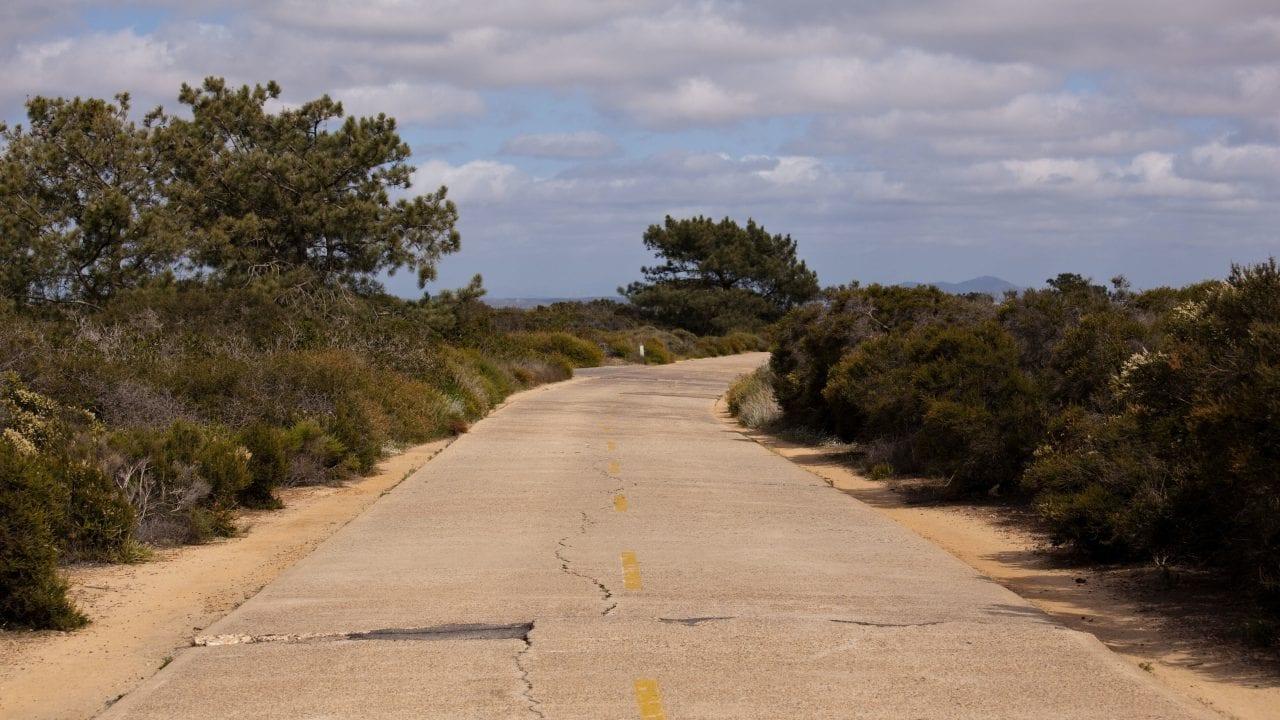 Torrey Pines State Park Road via Canva