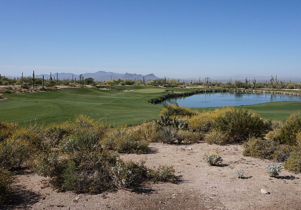 The_Golf_Club_at_Dove_Mountain_(Saguaro)_no_3