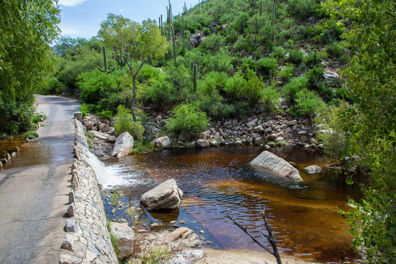 Sabino Canyon Dam