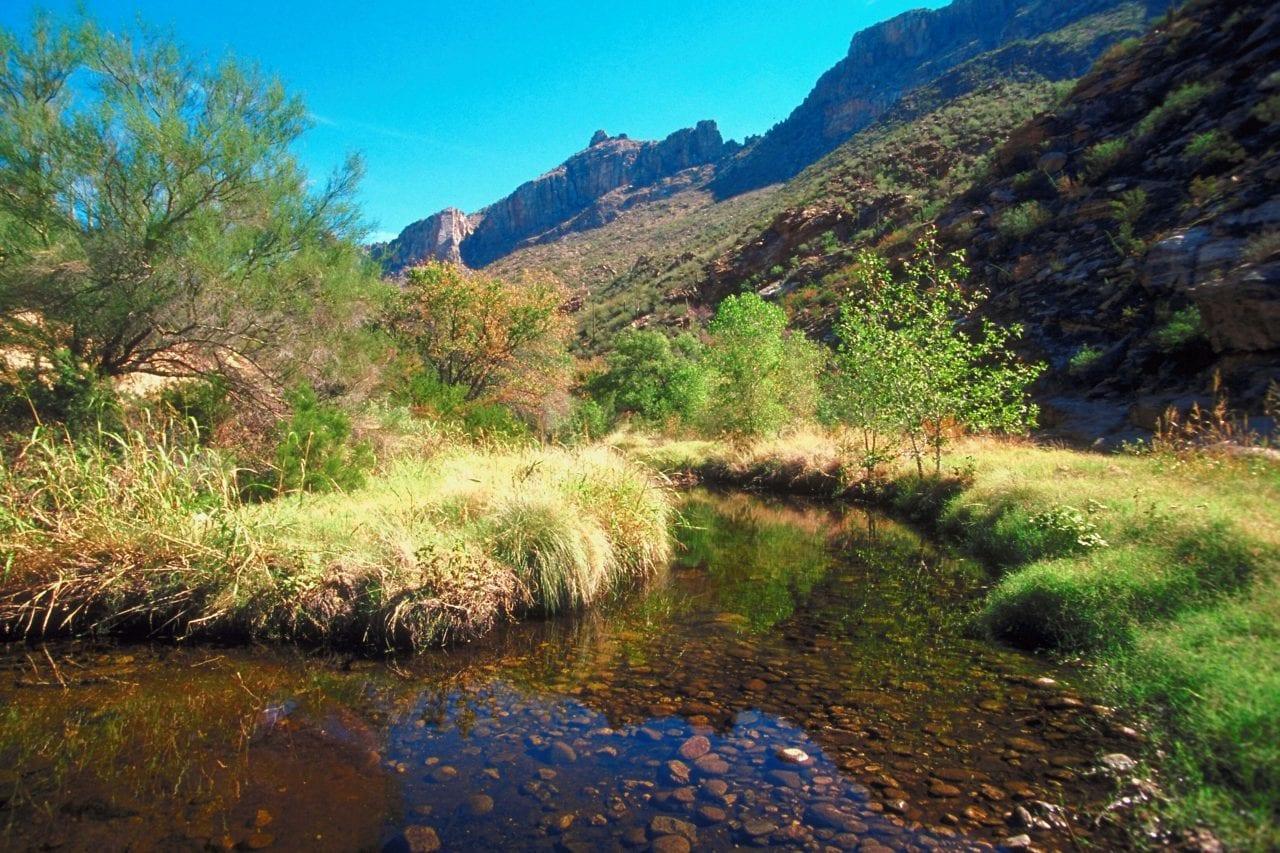Sabino Canyon Tucson via Canva