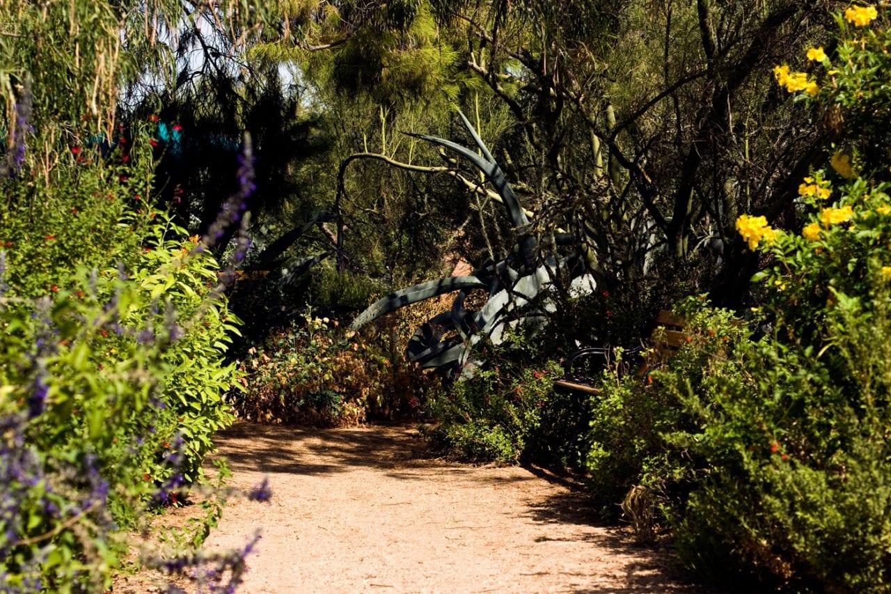 Tohono Chul Garden Path 1 via Visit Tucson