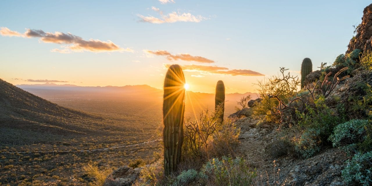 Tucson Bike Trails – The Local's Guide