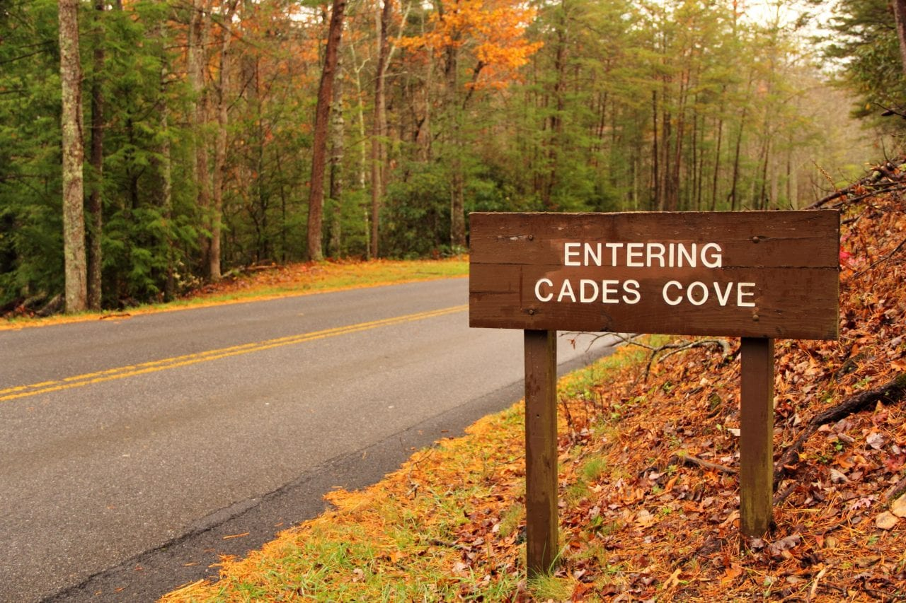 Cades Cove sign in autumn via Canva