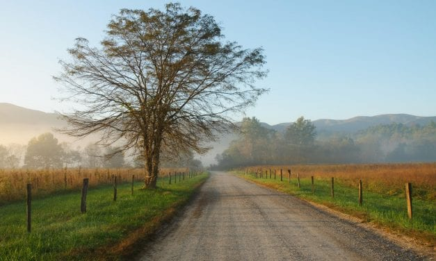 The Complete Guide to Cades Cove Loop