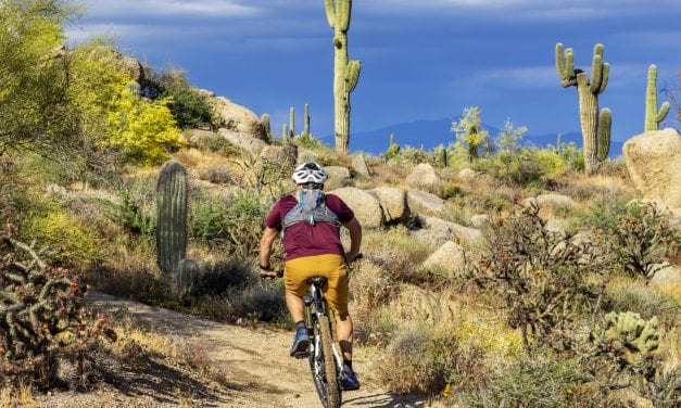 Tucson Mountain Biking – The Local's Guide to Tucson's Trails