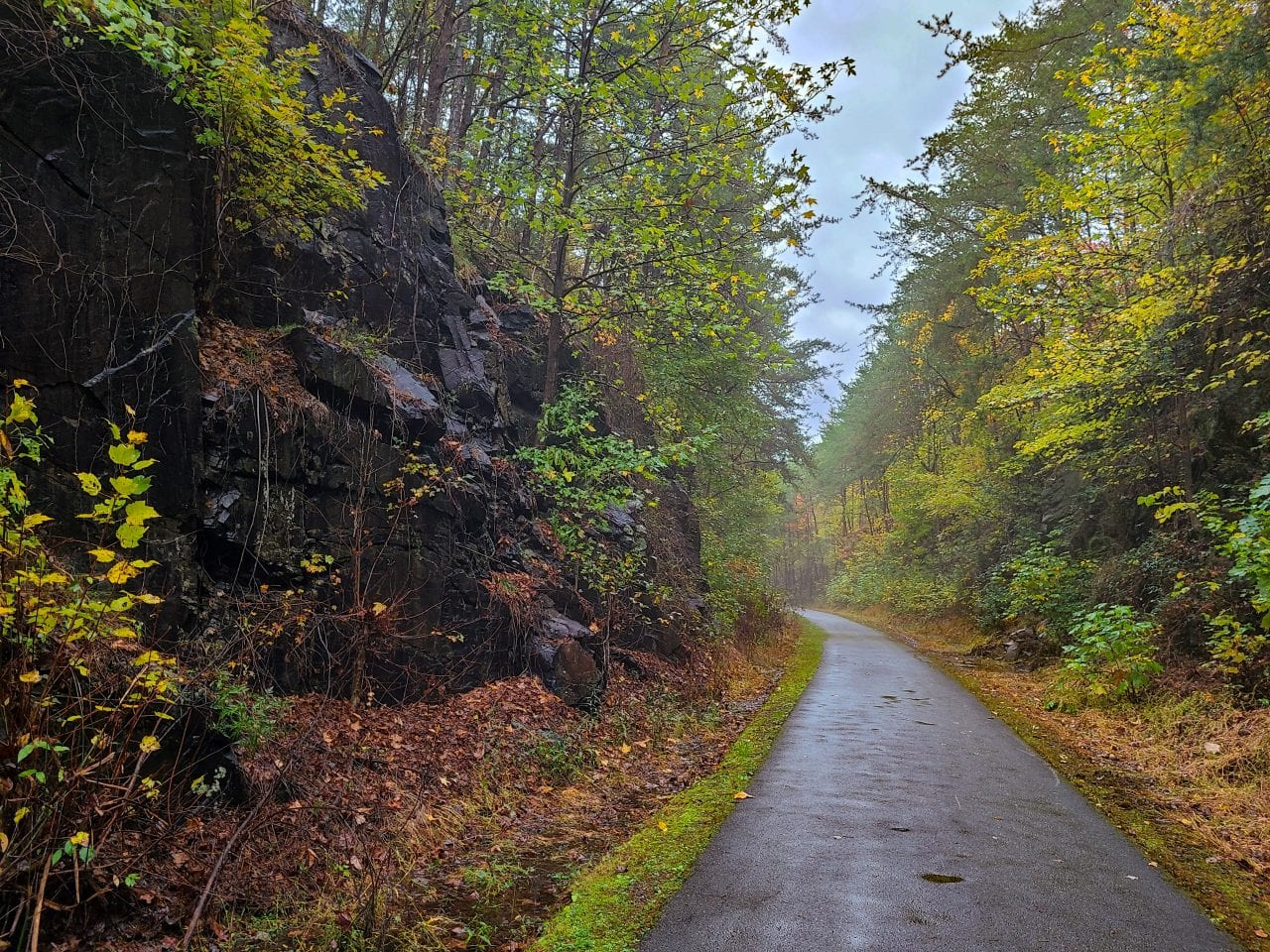 The Ultimate Chief Ladiga Trail Guide - Alabama's Premiere Rails-to-Trails Project