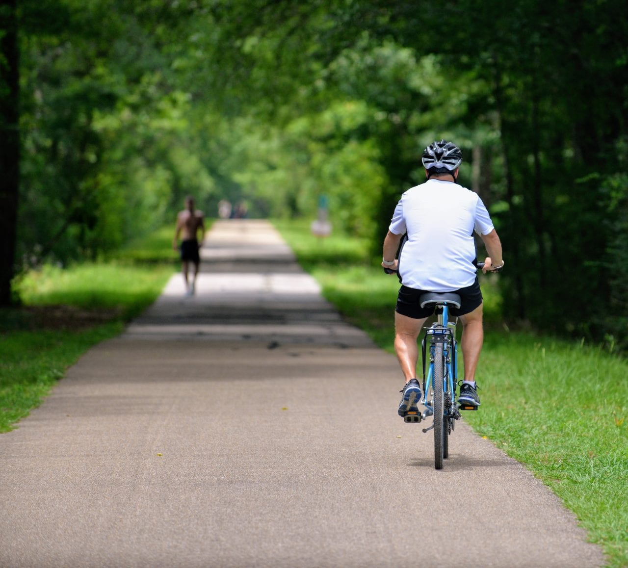 Recreational rider on the Longleaf Trace