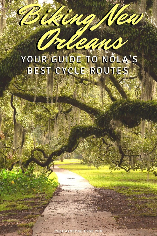 Bike trail under Oaks in New orleans