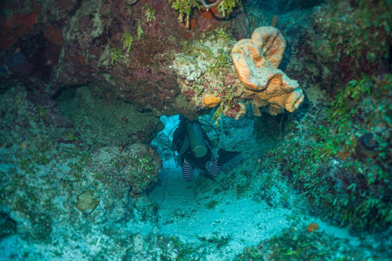 Diving under a swim through