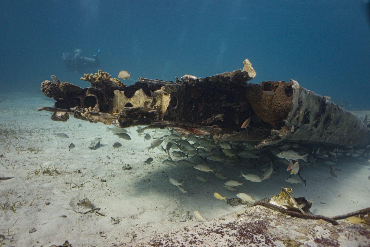 Diving the Smuggler Plane Wreck