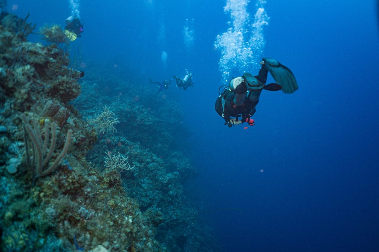 Scuba diving over the abyss in the Bahamas