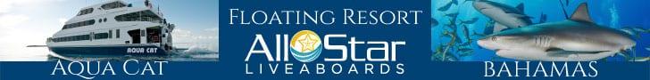 All Star Liveaboards Banner