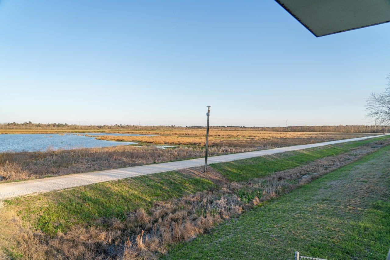 Cattail Marsh Beaumont-