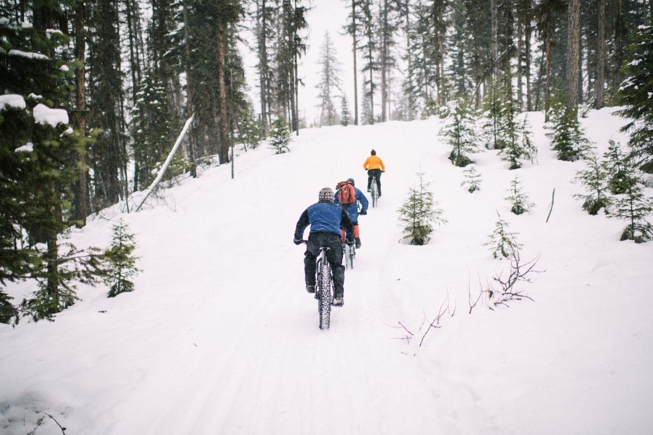 Fat Tire Biking by Brian Schott