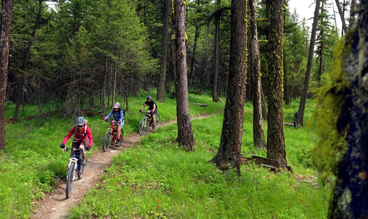 Whitefish Trail_Brian Schott