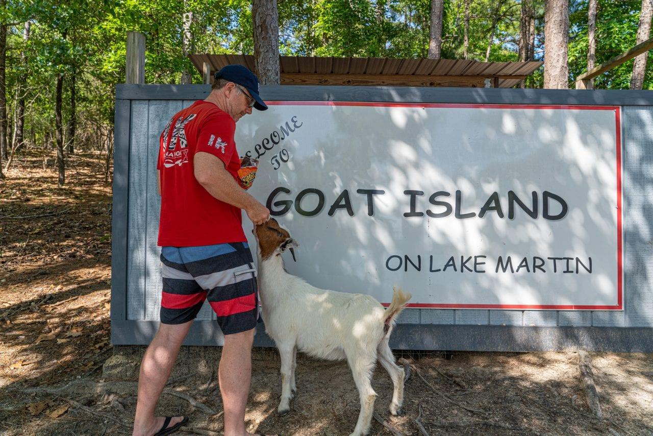Goat Island Lake Martin