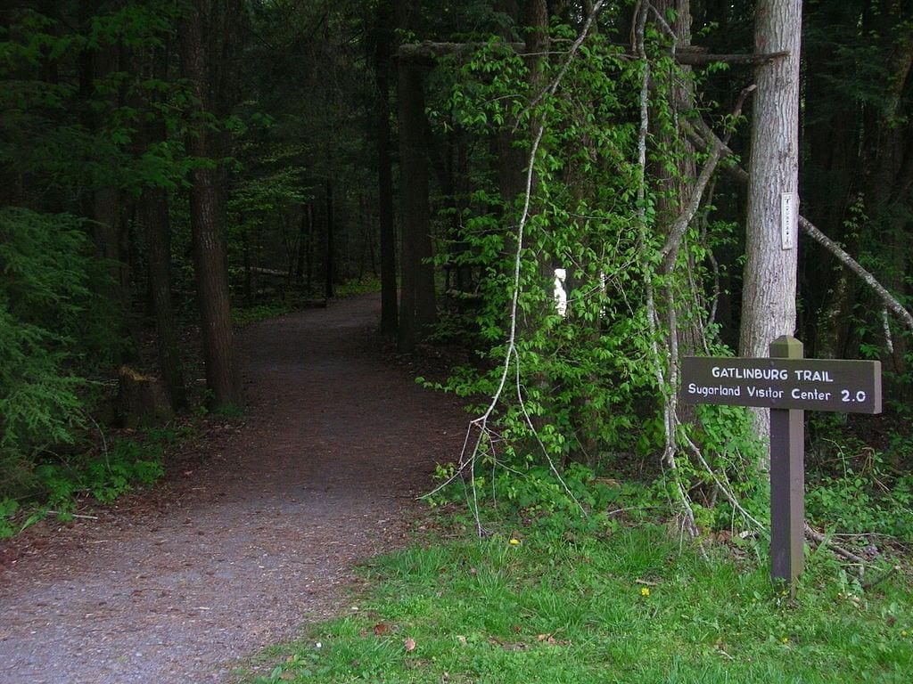 Gatlinburg_Trail_Trailhead by Scott Basford via Wikicommons