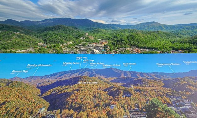 Hiking in Gatlinburg – A Guide To The Best 23 Trails In The Smokies