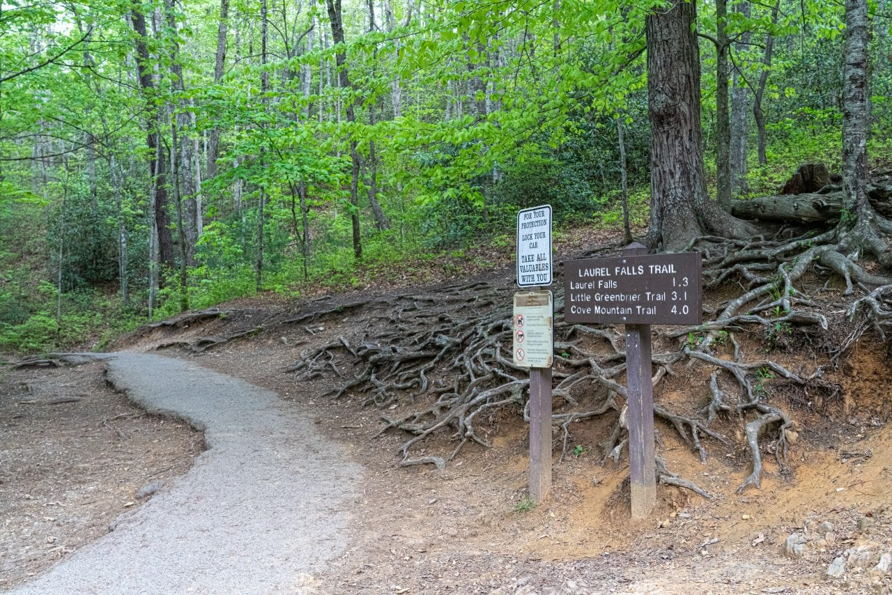 Laurel Falls Trailhead Sign