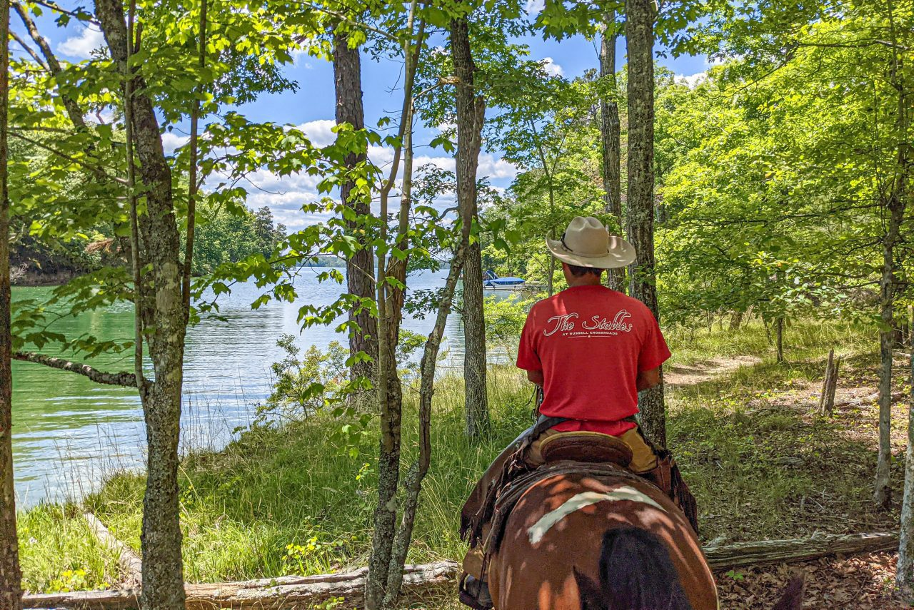 Cowboy leading a trail ride