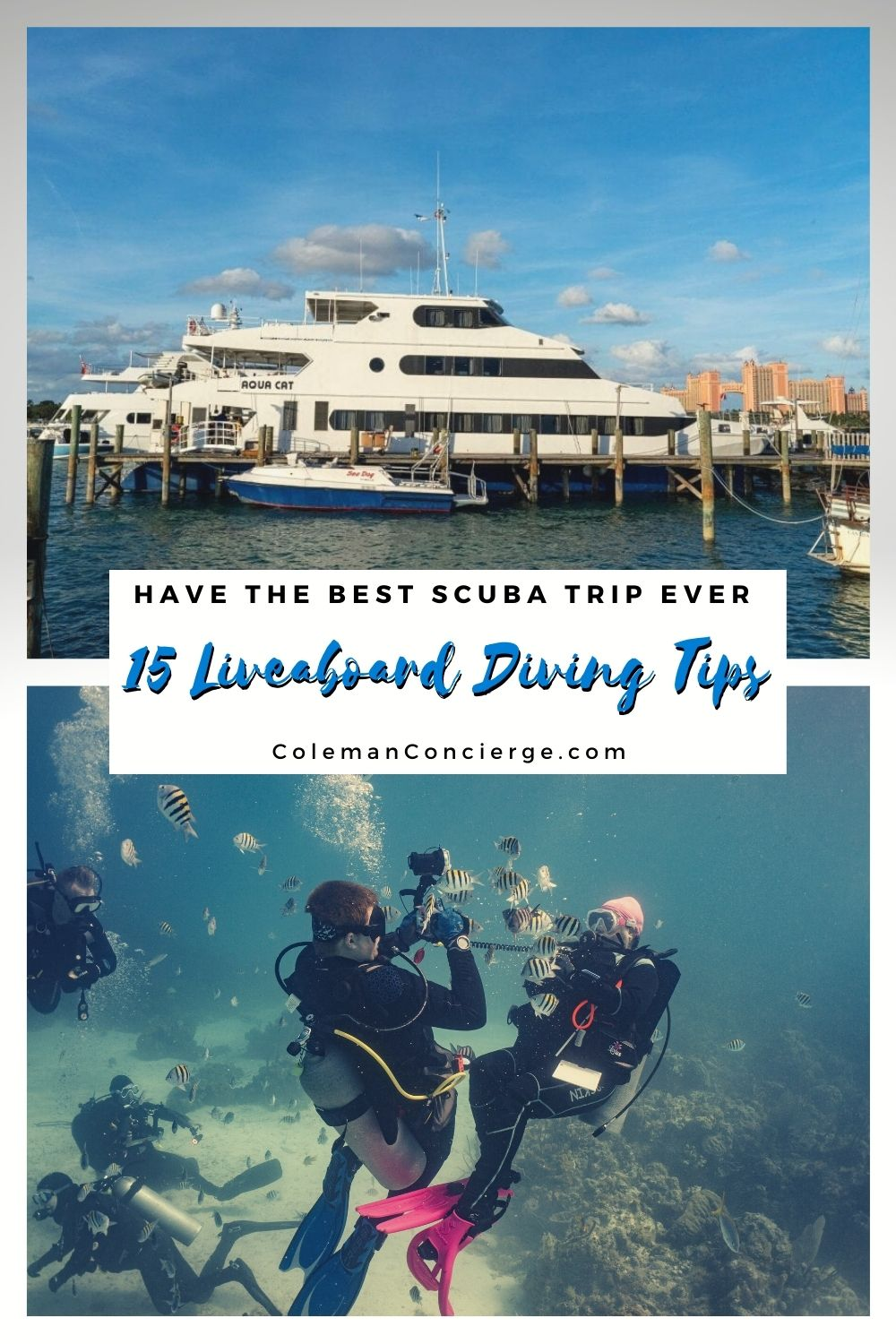 Dive boat and divers