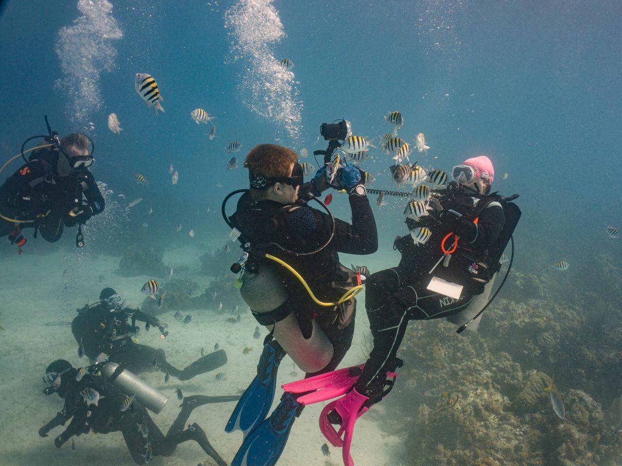 Making friends underwater