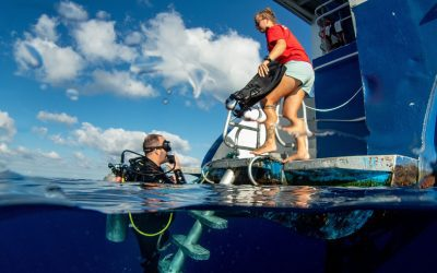 15 Liveaboard Diving Tips to Have the Best Trip Ever