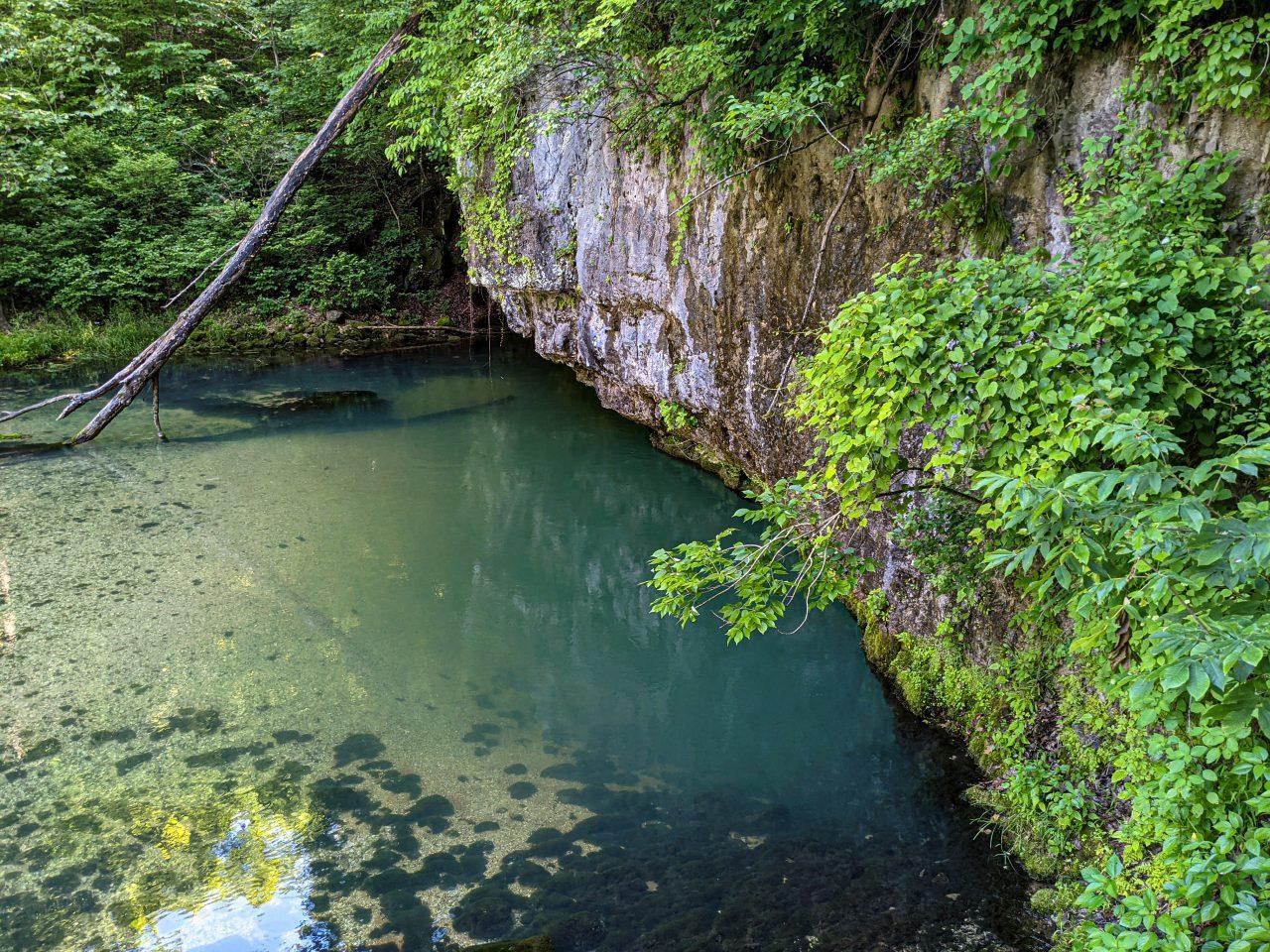 Ha Ha Tonka Springs