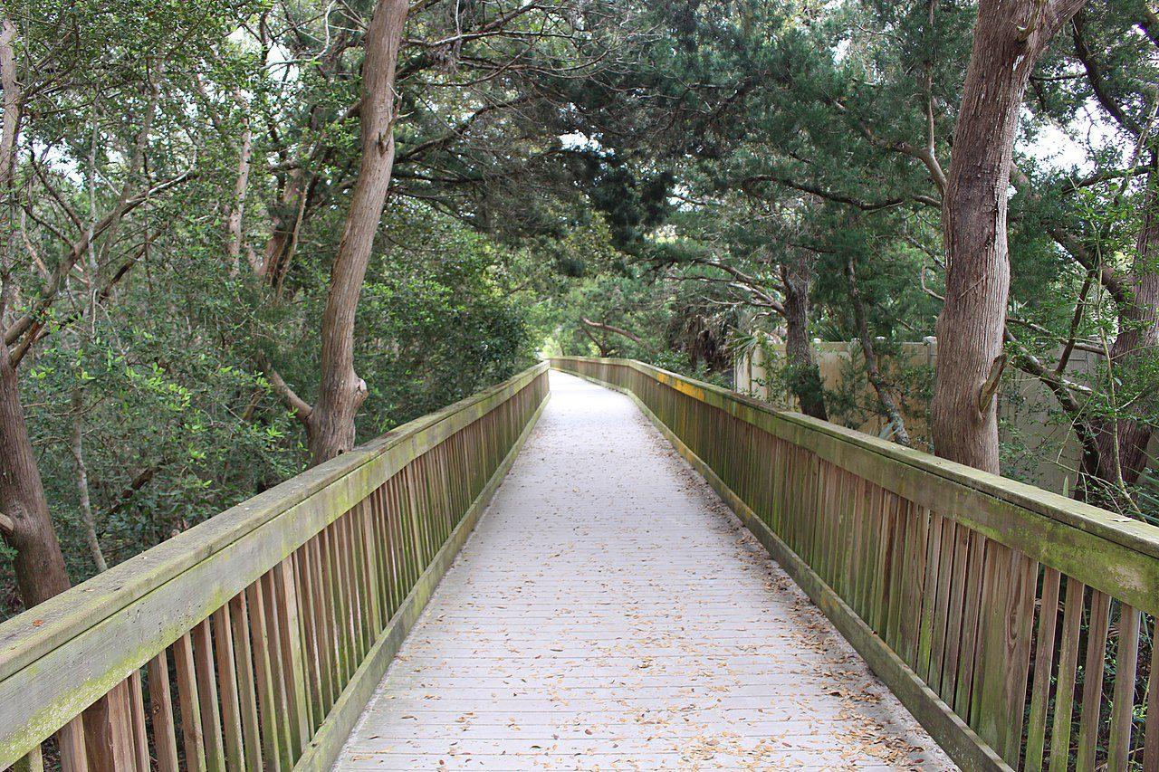 Ocean_Hammock_Park_walkway_a-by-Michael Rivera-via-wikimedia